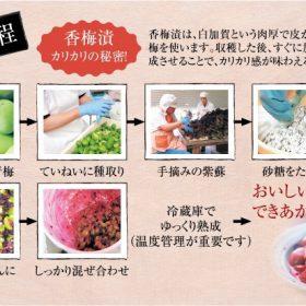 香梅漬の製造工程です